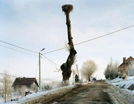 Mark Power, Krzyzowka, 12.2004