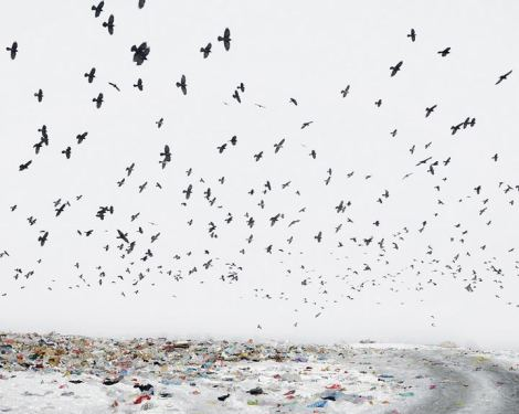 Tamas Dezso, Dump, Near Aiud, West Romania, 2012