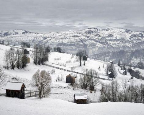 Tamas Dezso, Hovels, Near Moisei, North Romania, 2011
