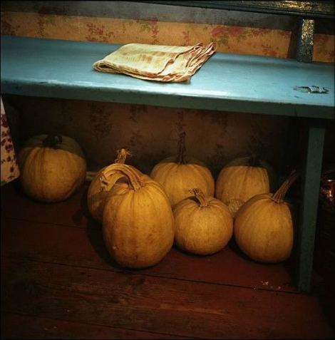 Squash under the bench in Hanna Zavorotnya's house in Kapavati village. Chernobyl, Ukraine. December 2010.