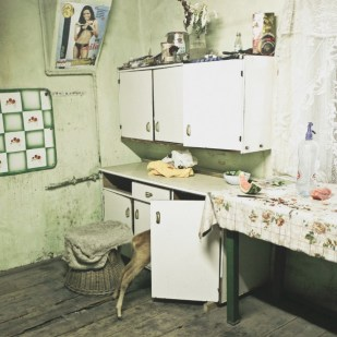 Ioana Cirlig, Pet Deer, Kovary Family, Copsa Mica, Post-Industrial Stories