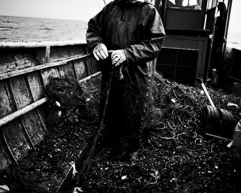 Tomasz Lazar, Coastline (2008 - 2010)