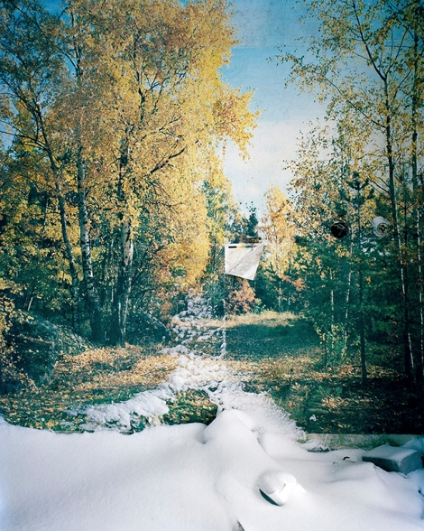 Yola Monakhov Stockton, Wallpaper With Snow, 2007, from Once Our of Nature: Travels through Russia (2003 - 2007)